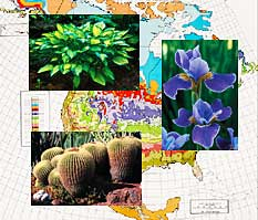 Collage showing research applications